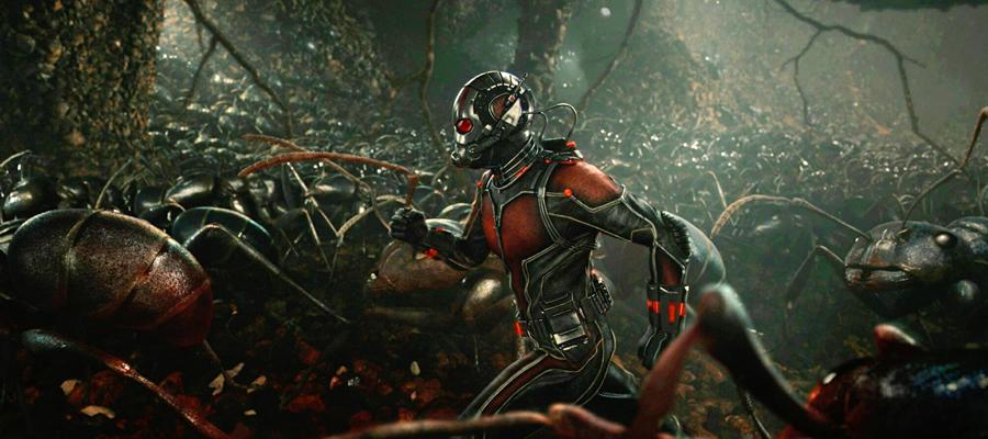 Saga Avengers - Ant-Man (2015)