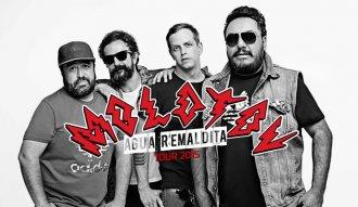 Molotov estará en Cali el 19 de diciembre